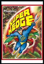 rsz_super_hedge